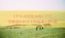 【グルメだけじゃない!?】宮崎県のおすすめ温泉と宿5選